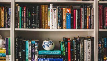 A pot and books on a bookshelf